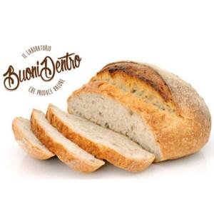 pane con logo1