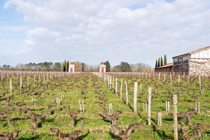 Bordeaux-En-Primeur-Wine-Day3-3