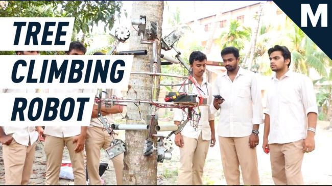 Resourceful robot can wheel up trees to cut down coconuts