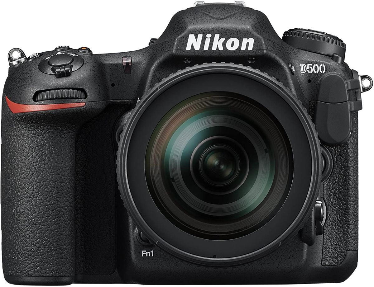 Need a new hobby? Treat yourself to a camera this Black Friday.