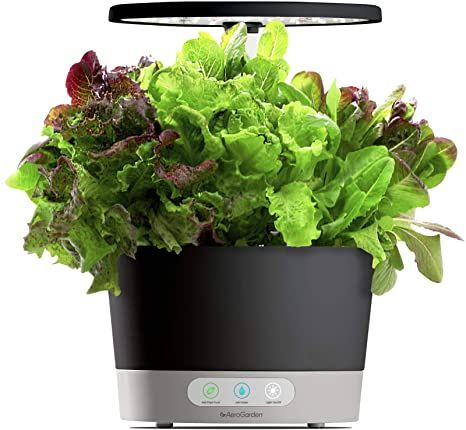Add life to your countertop with $65 off this Aerogarden system