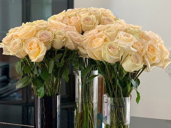 Surprise your Valentine with a special delivery of roses for only $40