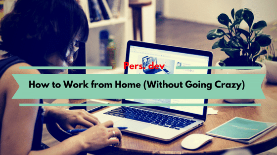 How to Work from Home (Without Going Crazy)