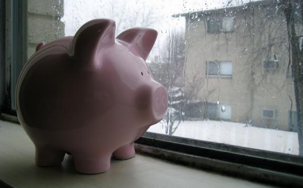 Piggy Bank Awaits the Spring