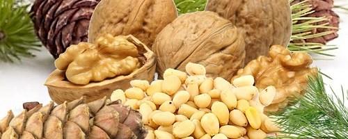 Бизнес-идея: Переработка грецких и кедровых орехов