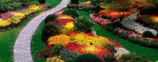 Бизнес-идея: Выращивание растений для ландшафтного дизайна