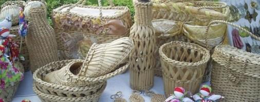 Бизнес идея: производство и продажа изделий из камыша