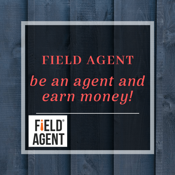 Field agent earn money with your phone