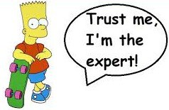 expert niche