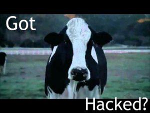 Got Hacked b