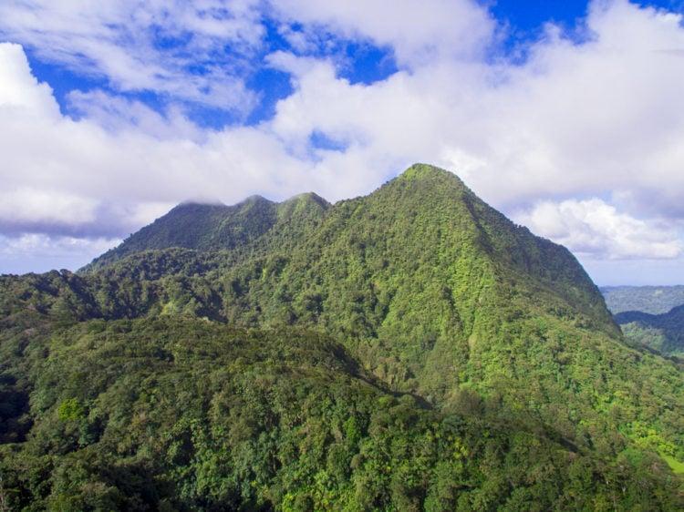 Hike Mount Gimie