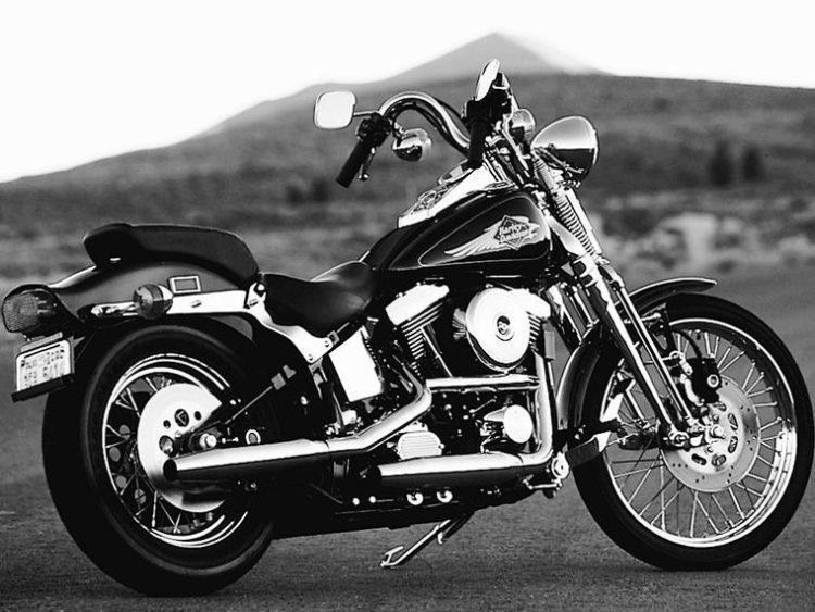 Harley Davidson Springer 2