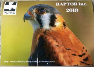 2019 RAPTOR Inc. Calendar