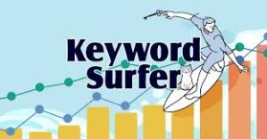 Keyword Surfer Google Chrome
