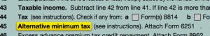 Alternative Minimum Tax Line Item