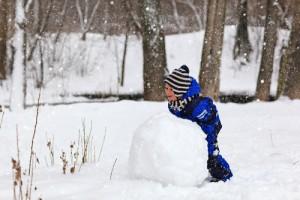 make a budget debt snowball