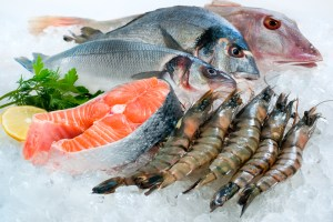 being poor can kill you food fish