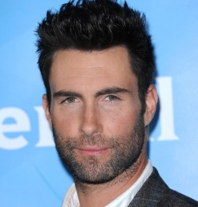 Adam Levine Net Worth Over Time