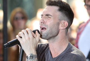 Adam Levine net worth from Concerts