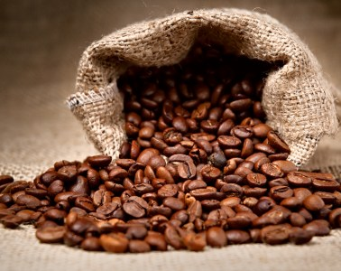 Most expensive coffee beans