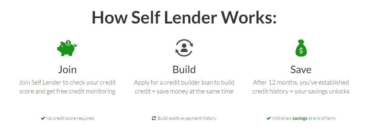 How Self Lender Works