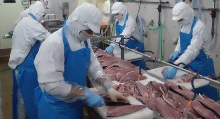 助成先⑤魚津漁業協同組合