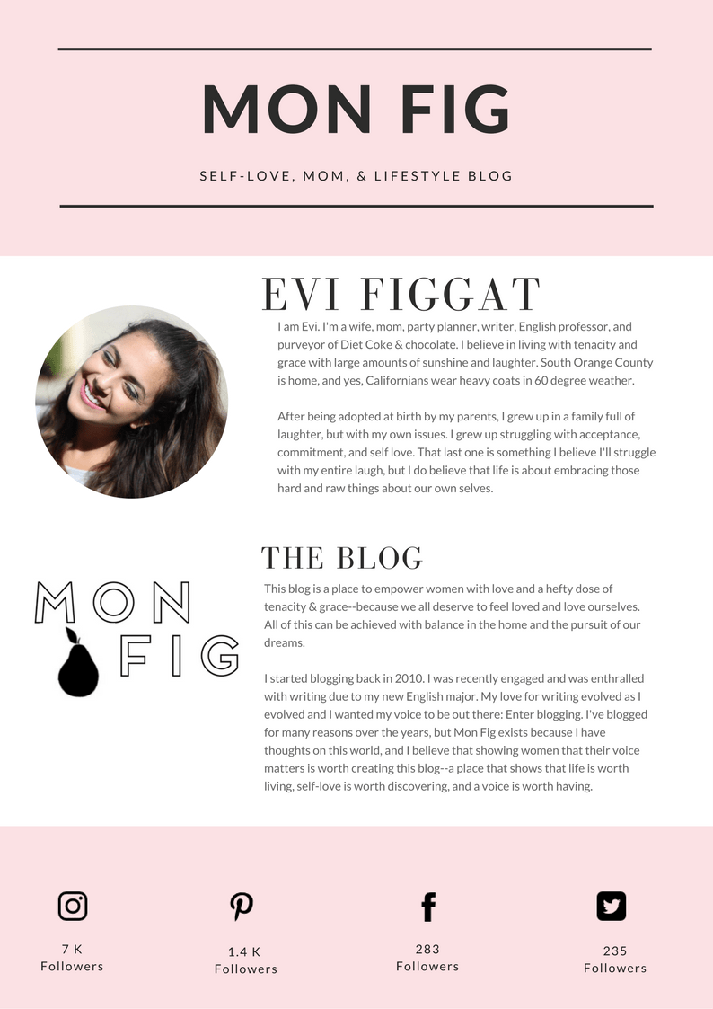 MON FIG Blogger Media Kit