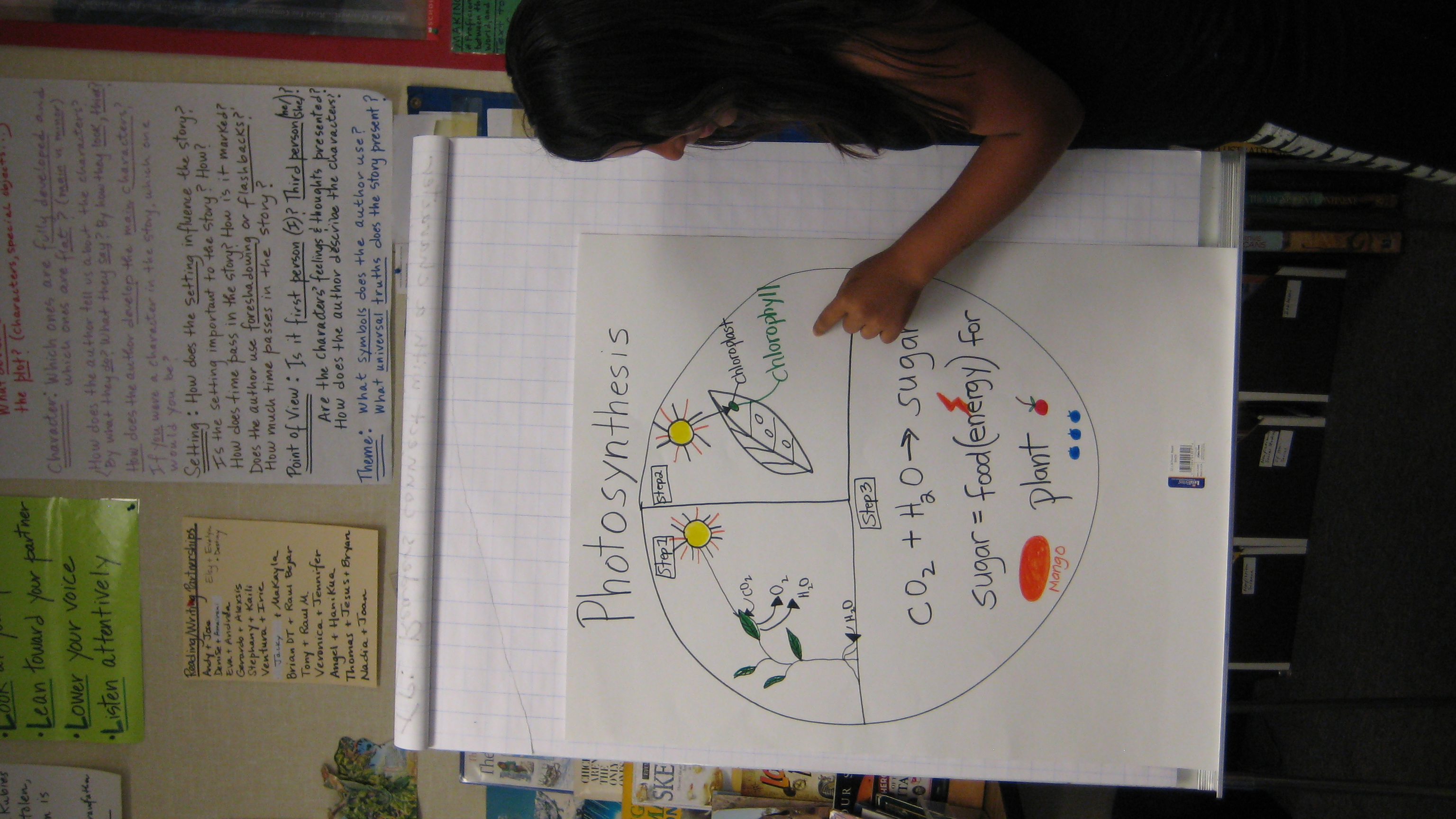Activity 1 Photosynthesis Mobile