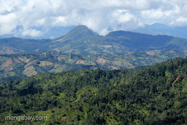 Mountain views from the Ebano Verde Scientific Reserve in the Dominican Republic. Photo by: Tiffany Roufs.