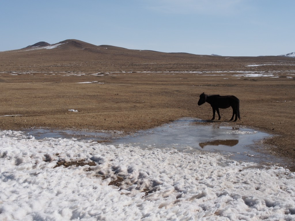 Cheap write my essay tourism in mongolia