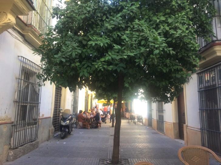 ヘレスのタバンコ「Tabanco San Pablo」のある通り