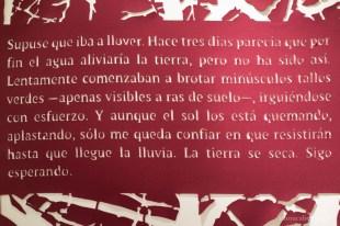 monicabengoa-composicion-de-palabras-04