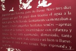 monicabengoa-composicion-de-palabras-06