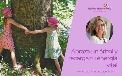 Abraza un árbol y recarga tu energía vital