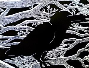 scratchboard crow