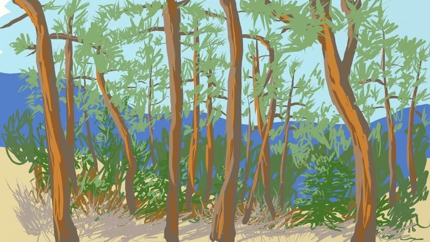 starsmore-trees_001