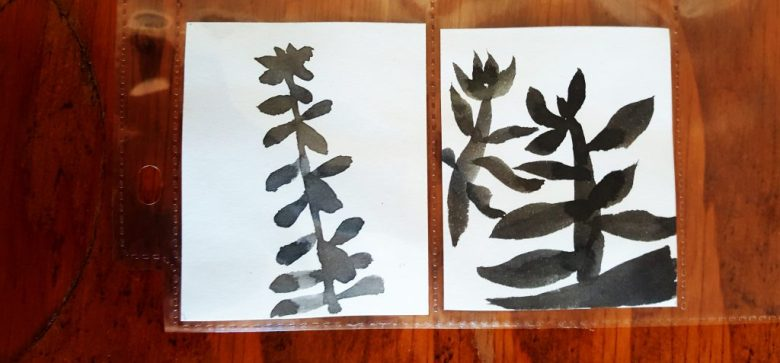 sumi-e beginner failed succulents
