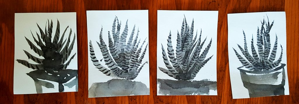 sumi-e beginner zebra succulents
