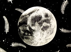 Moon Feathers scratchboard 2009