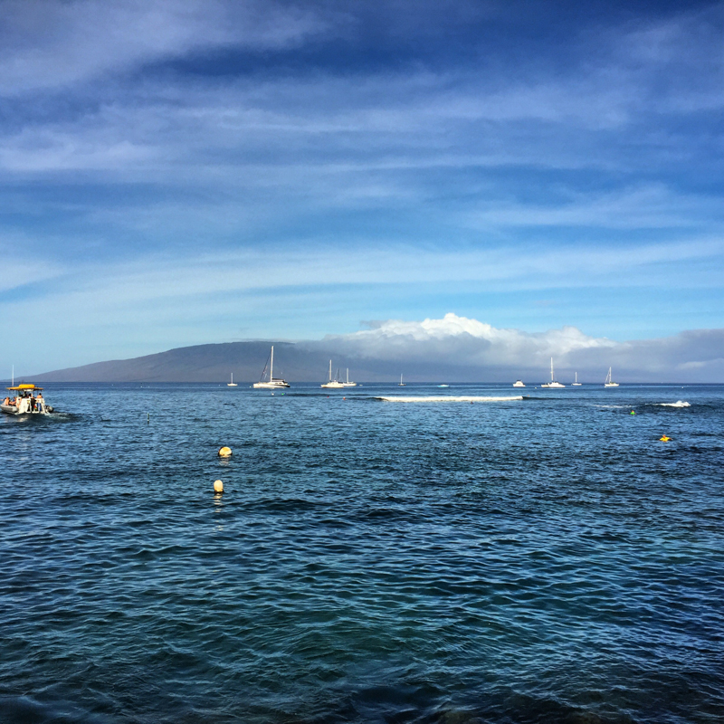 Lahaina Harbor morning