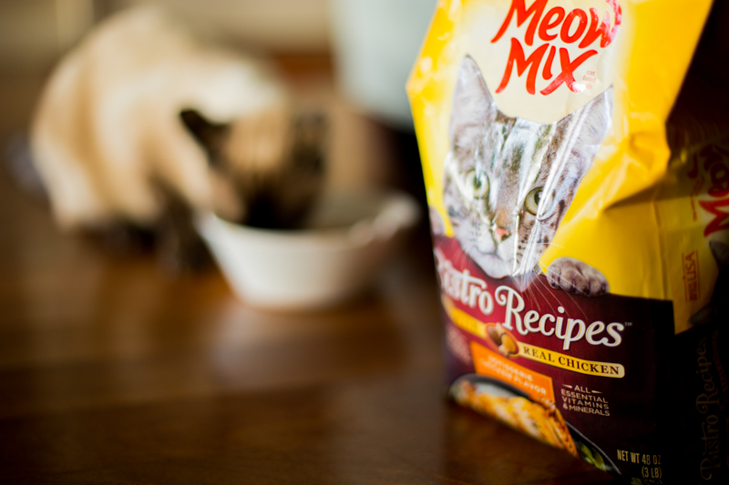 Bistro Blend Meow Mix and Coco