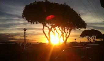 Maui, part I