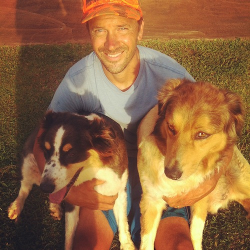 Dave and dogs