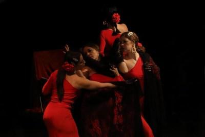 Andaluza Soul. Flamenco