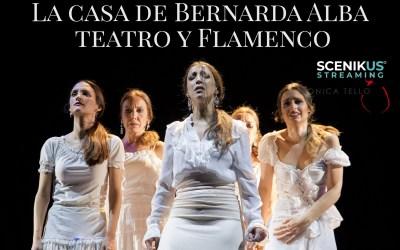 Teatro online. Teatro Flamenco MT en Scenikus