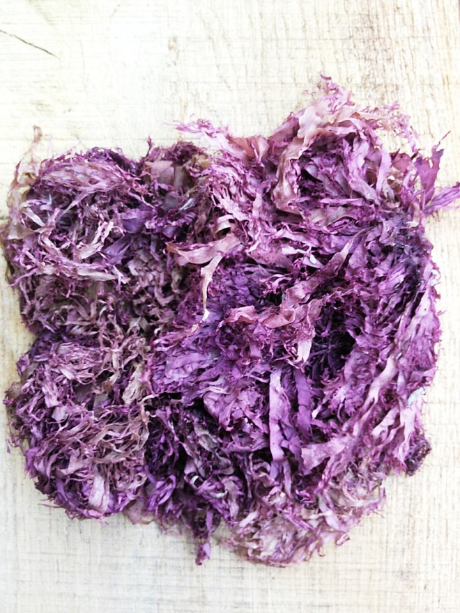 Dried dulse seaweed