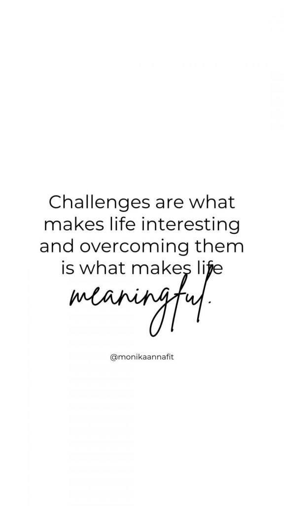 Challenges are what make life interesting and overcoming them is what makes life meaningful. monikaannafit.com