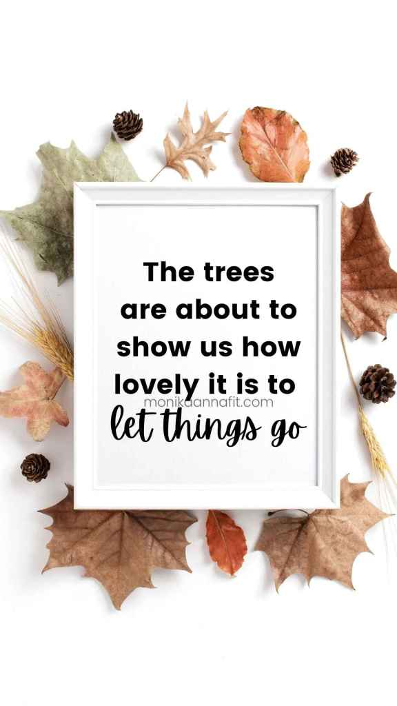 The trees are about to show us how lovely it is to let things go, fall leaves, monikaannafit.com