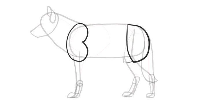 how-to-draw-wolves-drawing-process-8