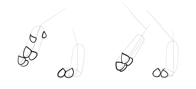 how-to-draw-wolves-feet-3